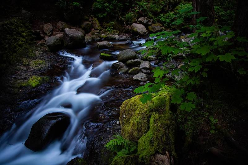 How exposure works: the flowing movement of water captured with a slow shutter speed.
