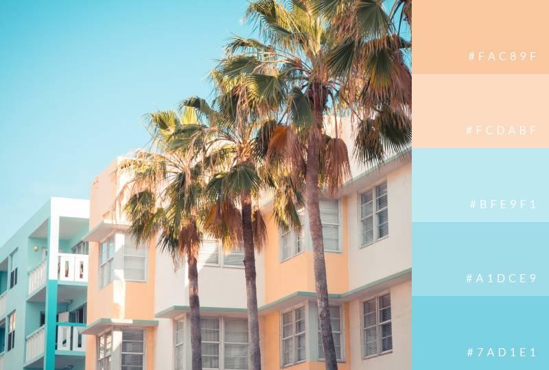 color-palette-seasonal-summer