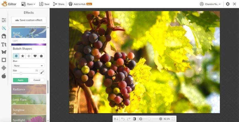 Adding bokeh to this photo of grapes changes its mood.