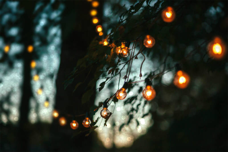 Adding bokeh effects with PicMonkey's tools can help you create depth, as seen in this pic of a strand of lights on trees.
