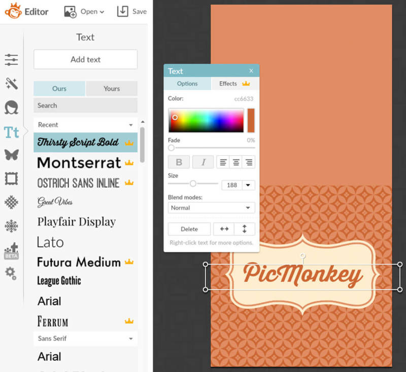 Add text to your Thanksgiving creations with PicMonkey.