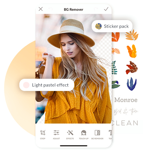 picmonkey mobile pro features