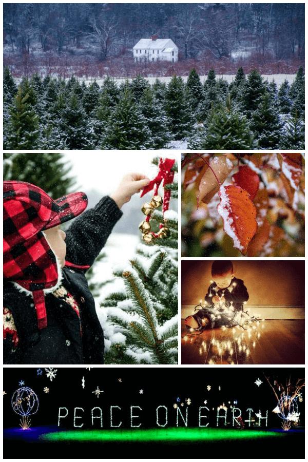 Holiday photo challenge winner: Christy Krampert.