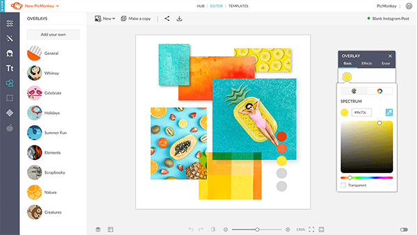 Use the color options in PicMonkey to create designs.