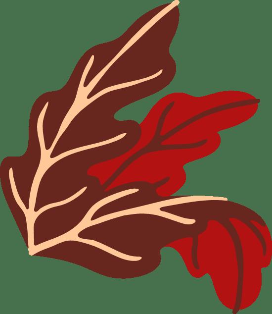Abstract Croton