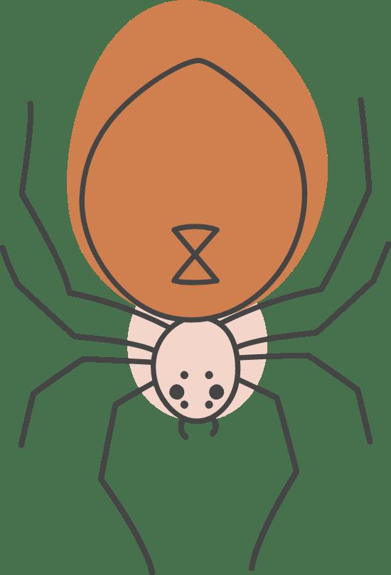 Halloween Black Widow