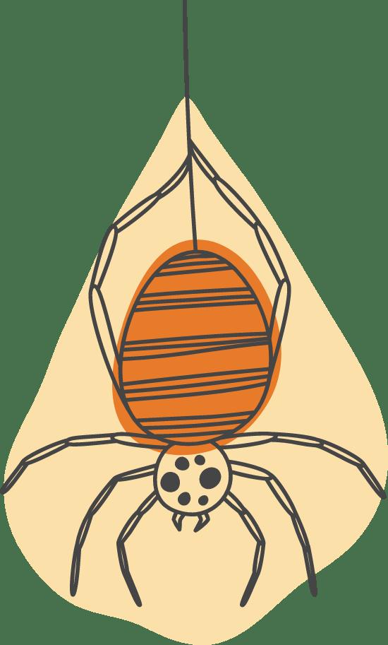Halloween Brown Recluse
