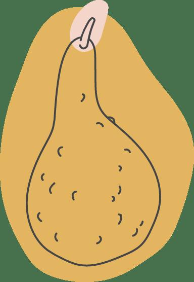 Autumn Crook Neck Squash