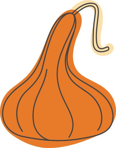 Autumn Long Neck Squash