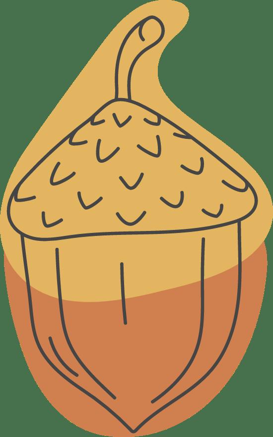 Autumn Acorn