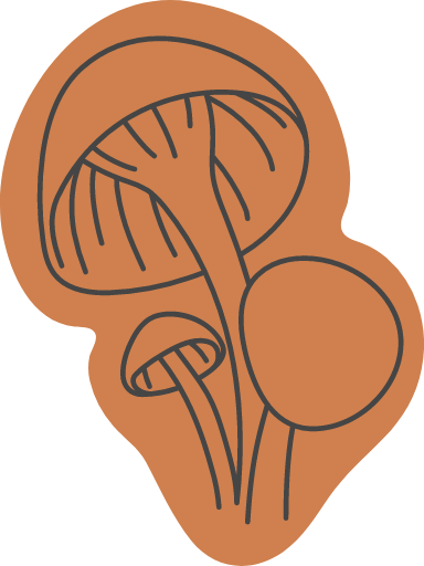 Autumn Mushroom Trio