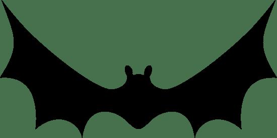 Landing Bat