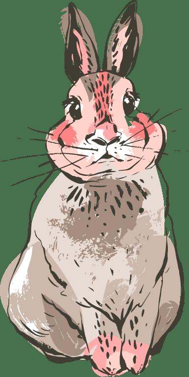 Staring Bunny