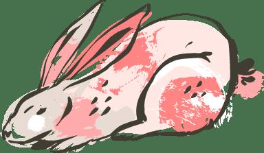 Resting Bunny
