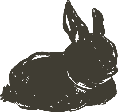 Sitting Shadow Bunny