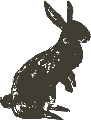 Hopping Shadow Bunny