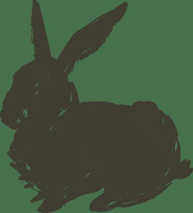 Resting Shadow Bunny