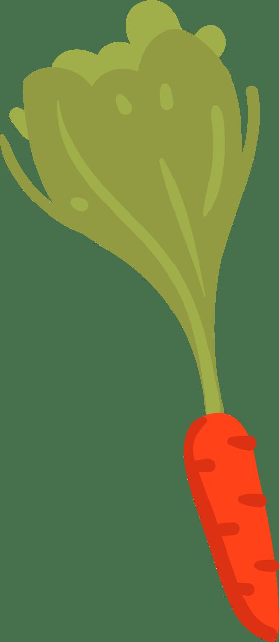 Basic Carrot