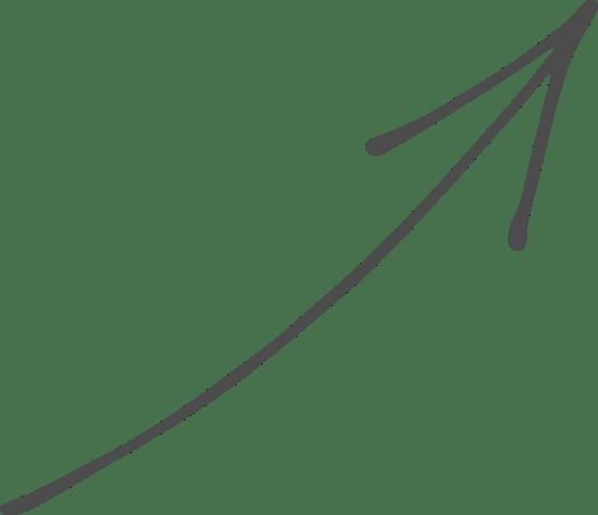 Swooping Arrow