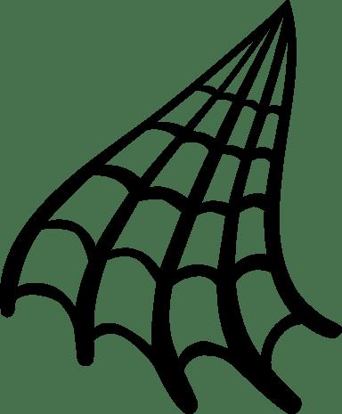 Curvy Spider Web