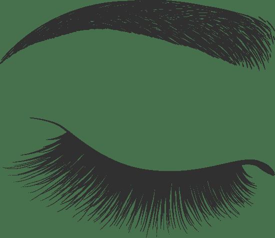 Eyelid & Curved Brow