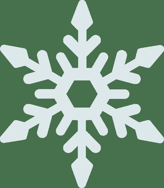 Frigid Snowflake
