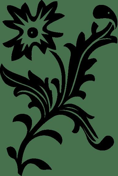 Dancing Anemone