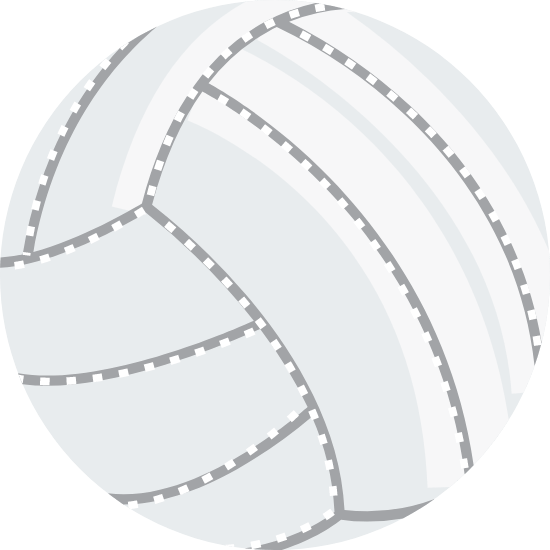 Stitched Volleyball