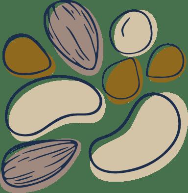 Sketched Nuts