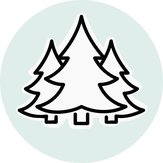 Basic Pine Trees