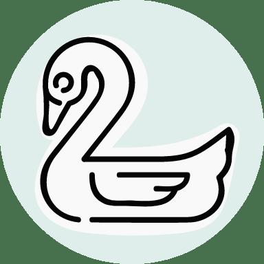 Basic Swan