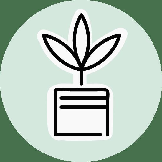 Basic Three-Leaf Plant