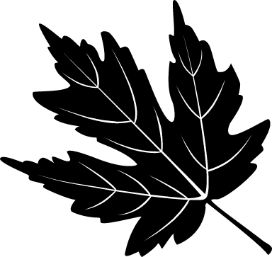 Sable Maple Leaf