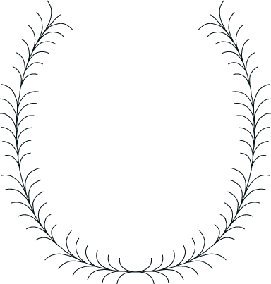 Drawn Thicket Frame