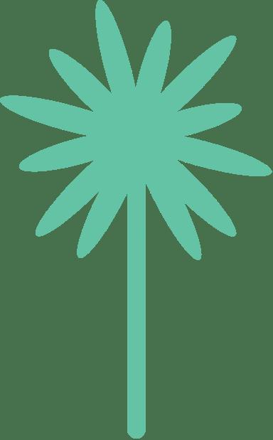 Straight Palm Tree
