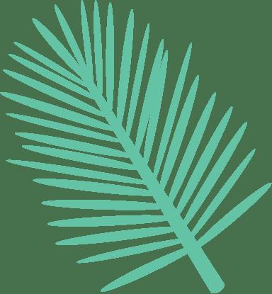 Parlor Palm Leaf