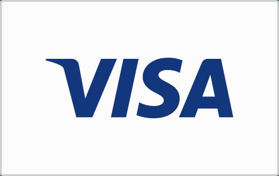 Visa Payment Card
