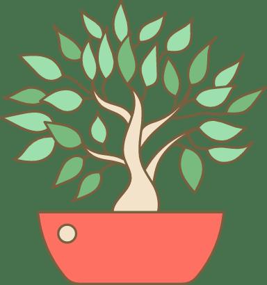 Potted Bonsai Plant
