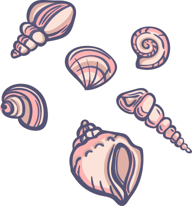 Marine Seashells