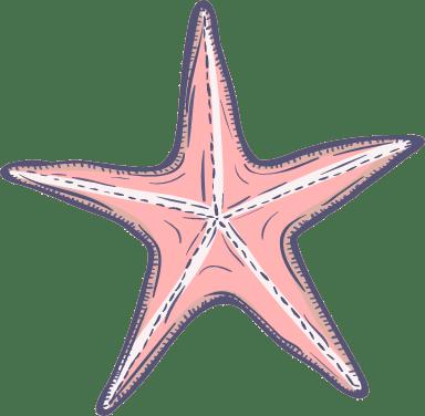 Marine Starfish