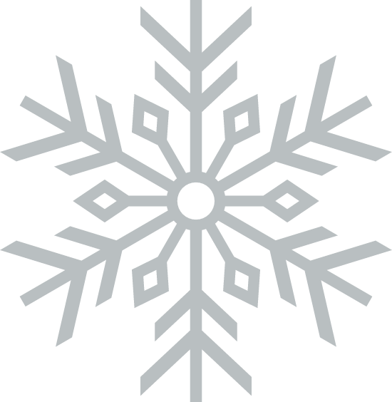 Prickly Snowflake