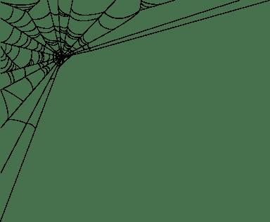 Wispy Spider Web