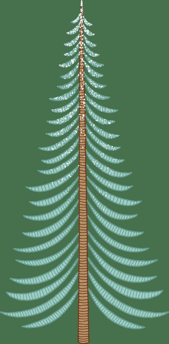 Juniper Tree Graphic   PicMonkey Graphics