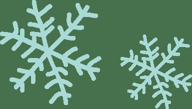 Two Snowflakes