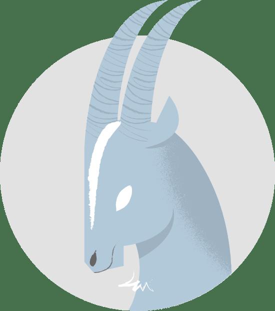 Capricorn Goat