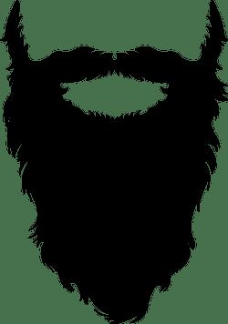 Wise Beard