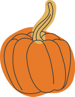 Autumn Cinderella Pumpkin