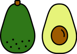 Outlined Avocado