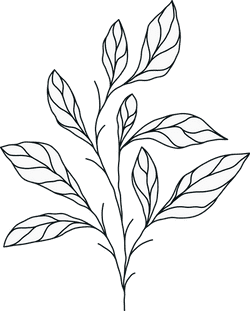 Illustrated Greenery