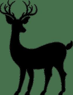 Alerted Reindeer